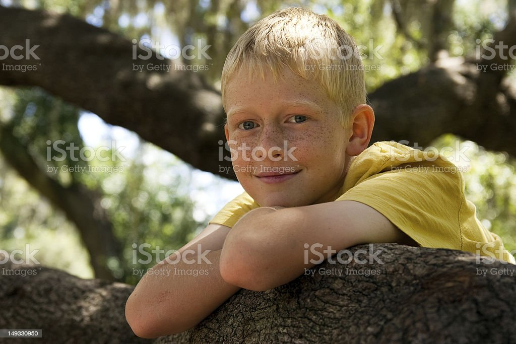 Boy and  a tree branch stock photo