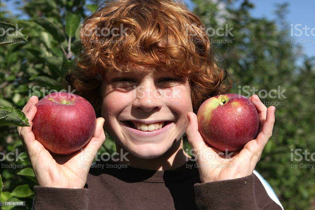 Boy and Apples stock photo