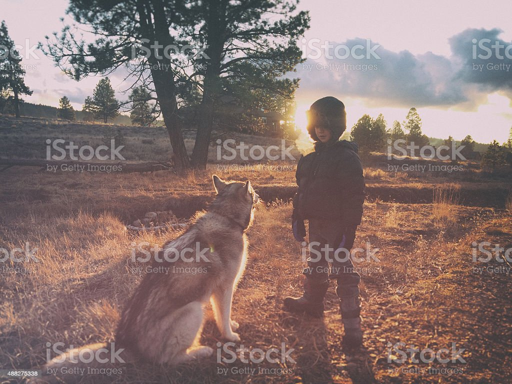 Boy and dog in the wilderness in autumn stock photo