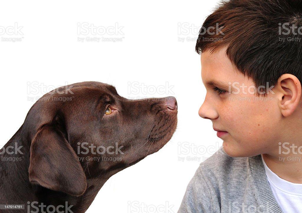 Boy and dog royalty-free stock photo