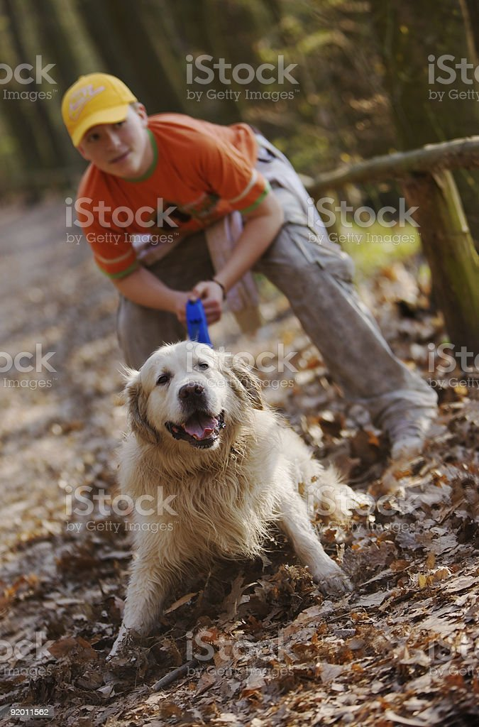 Boy and dog (golden retriver) royalty-free stock photo