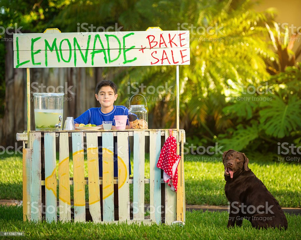 Boy and dog selling lemonade stock photo