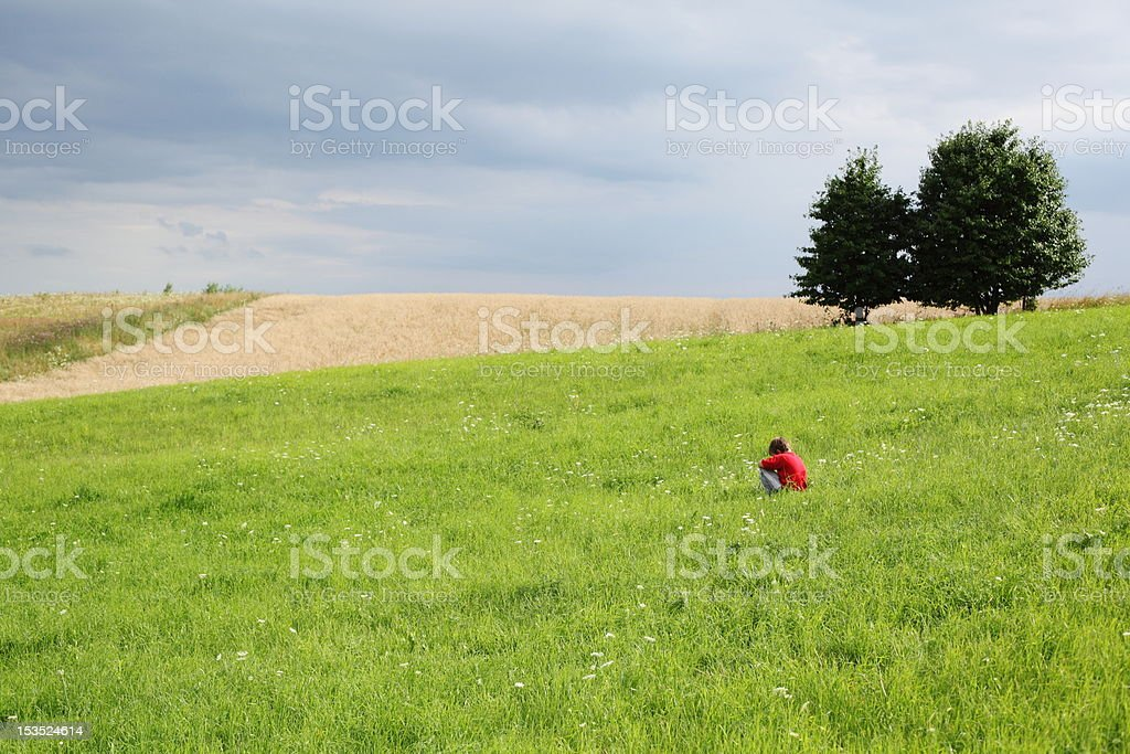 boy and fields royalty-free stock photo