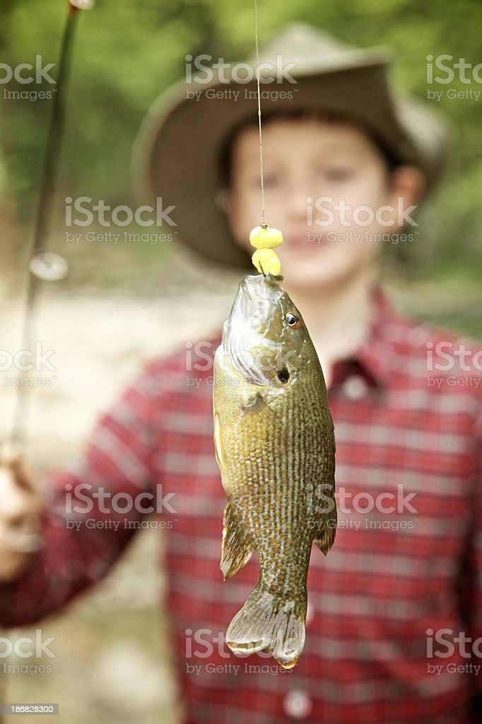 Boy and fish stock photo