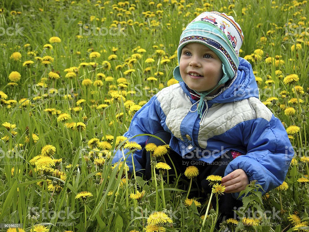 boy and flowers meadow royalty-free stock photo