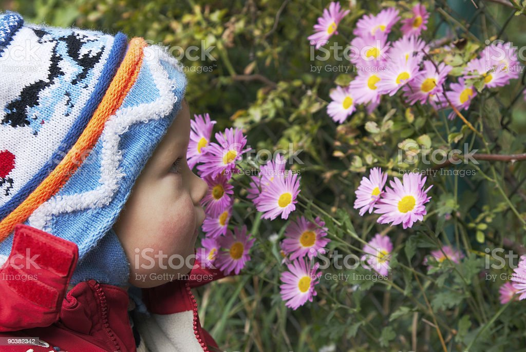Boy and flowers royalty-free stock photo