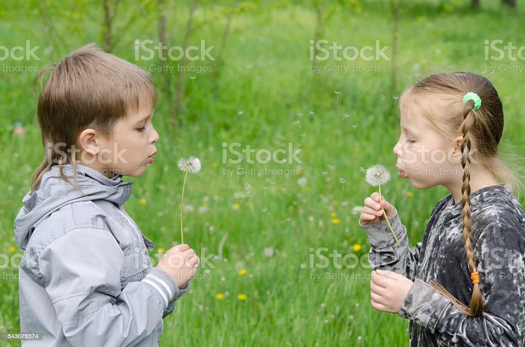 Boy and girl Standing In Field Blowing Dandelions stock photo