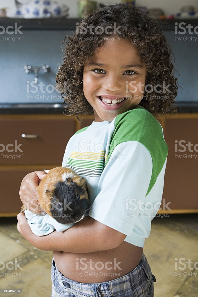 Boy and guinea pig royalty-free stock photo