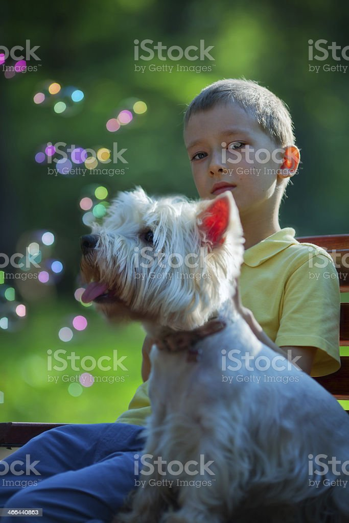 Boy and His Dog royalty-free stock photo