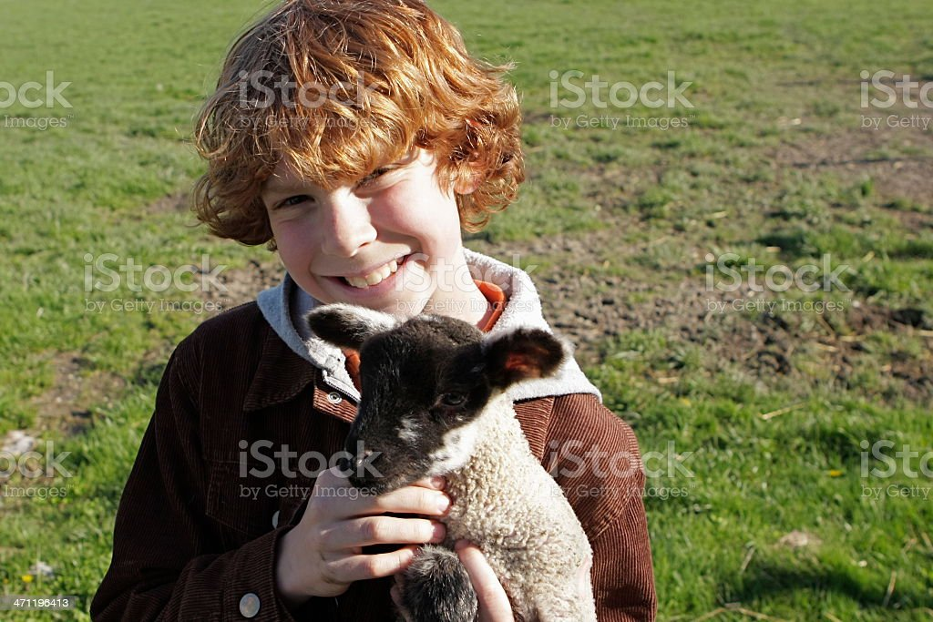 Boy and Lamb royalty-free stock photo