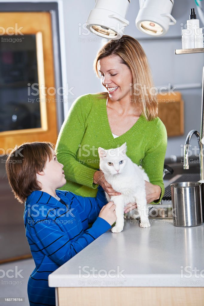 Boy and mother taking pet cat to vet stock photo