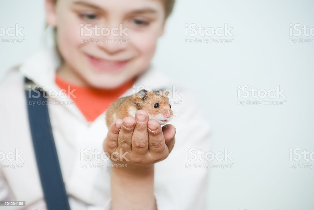 boy and pet stock photo