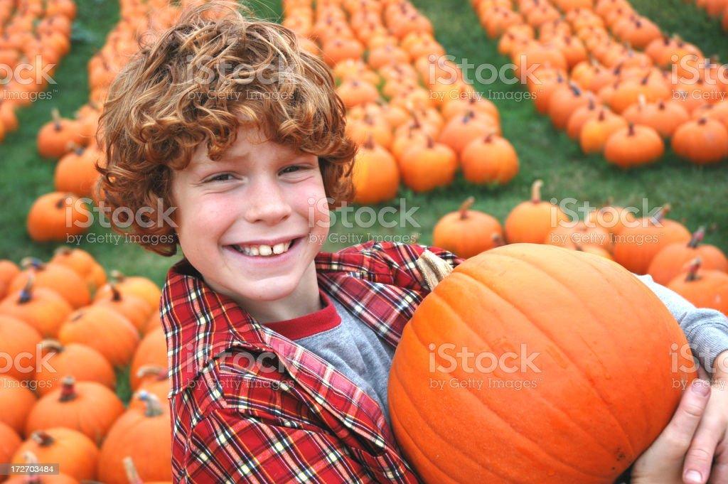 Boy and Pumpkins stock photo