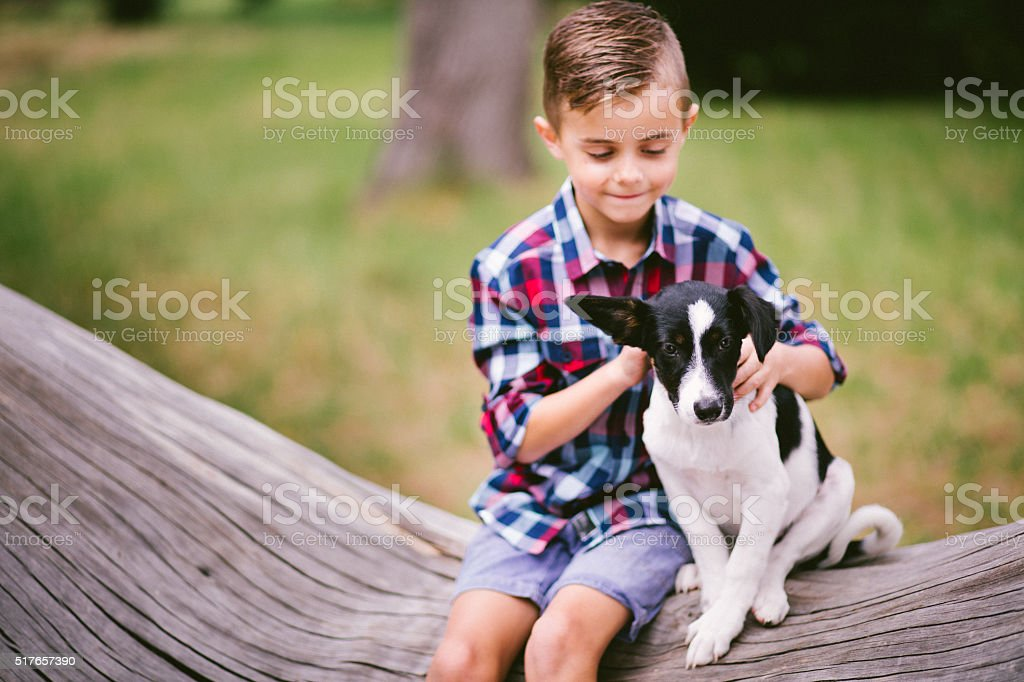 Boy and puppy dog sitting on tree branch in park stock photo