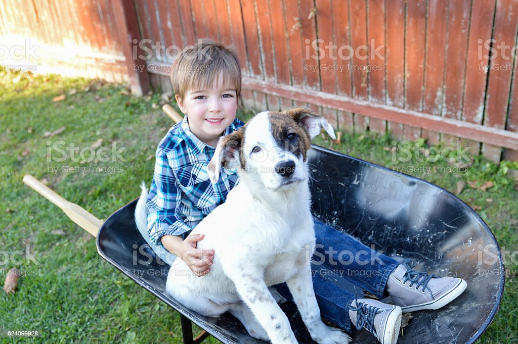 Boy and Puppy Sitting in Wheelbarrow stock photo