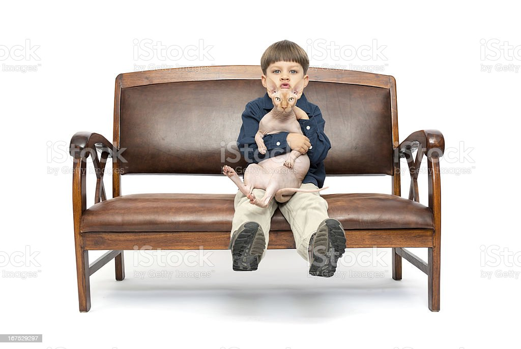 boy and sphynx cat royalty-free stock photo