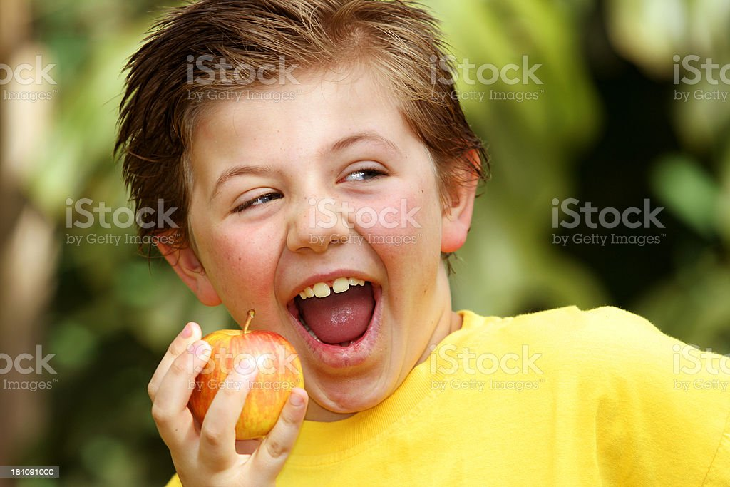 Boy Apple Landscape 2 royalty-free stock photo