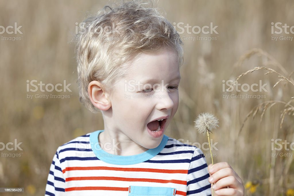 boy at summer royalty-free stock photo