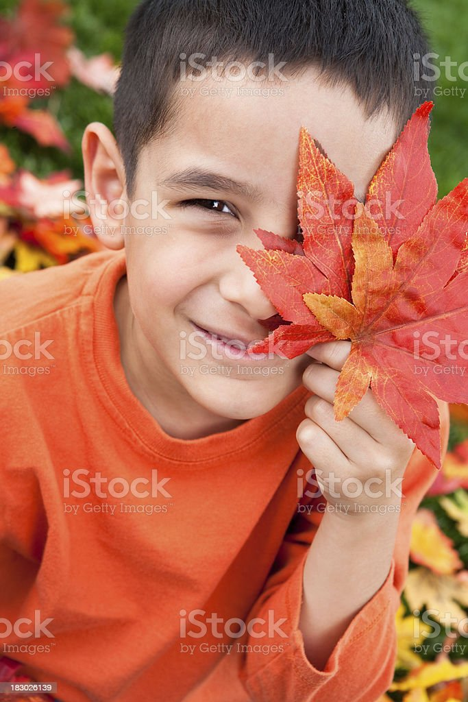 Boy autumn portrait royalty-free stock photo