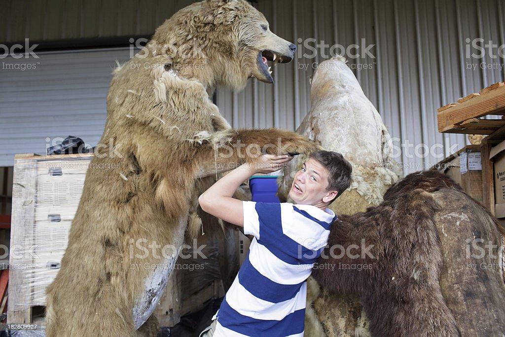 Boy Bear Attack stock photo