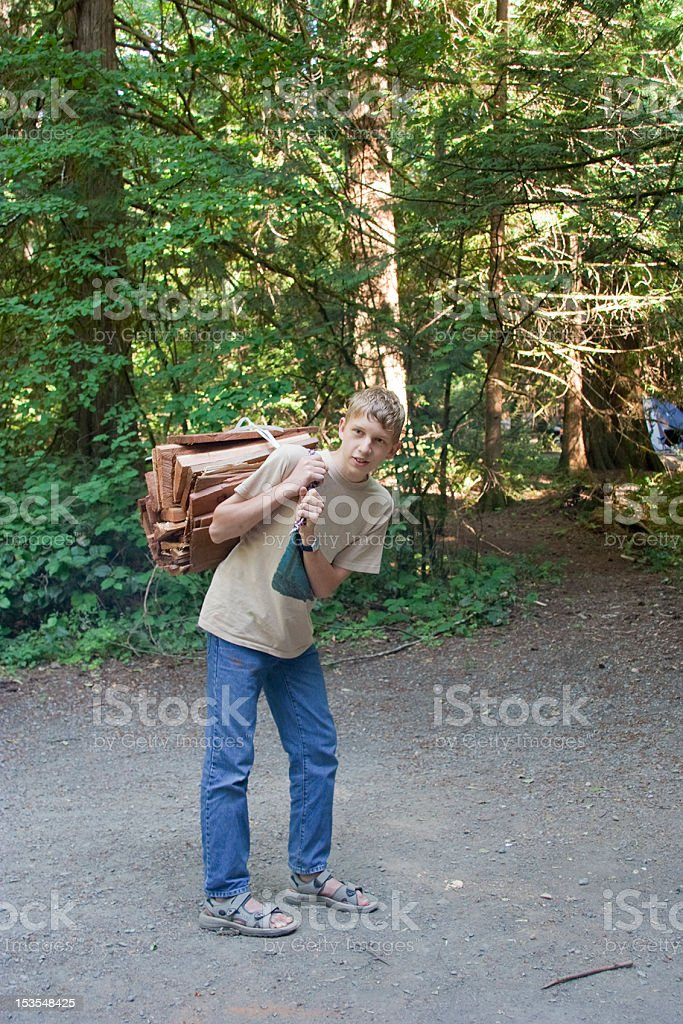 Boy carrying Firewood royalty-free stock photo