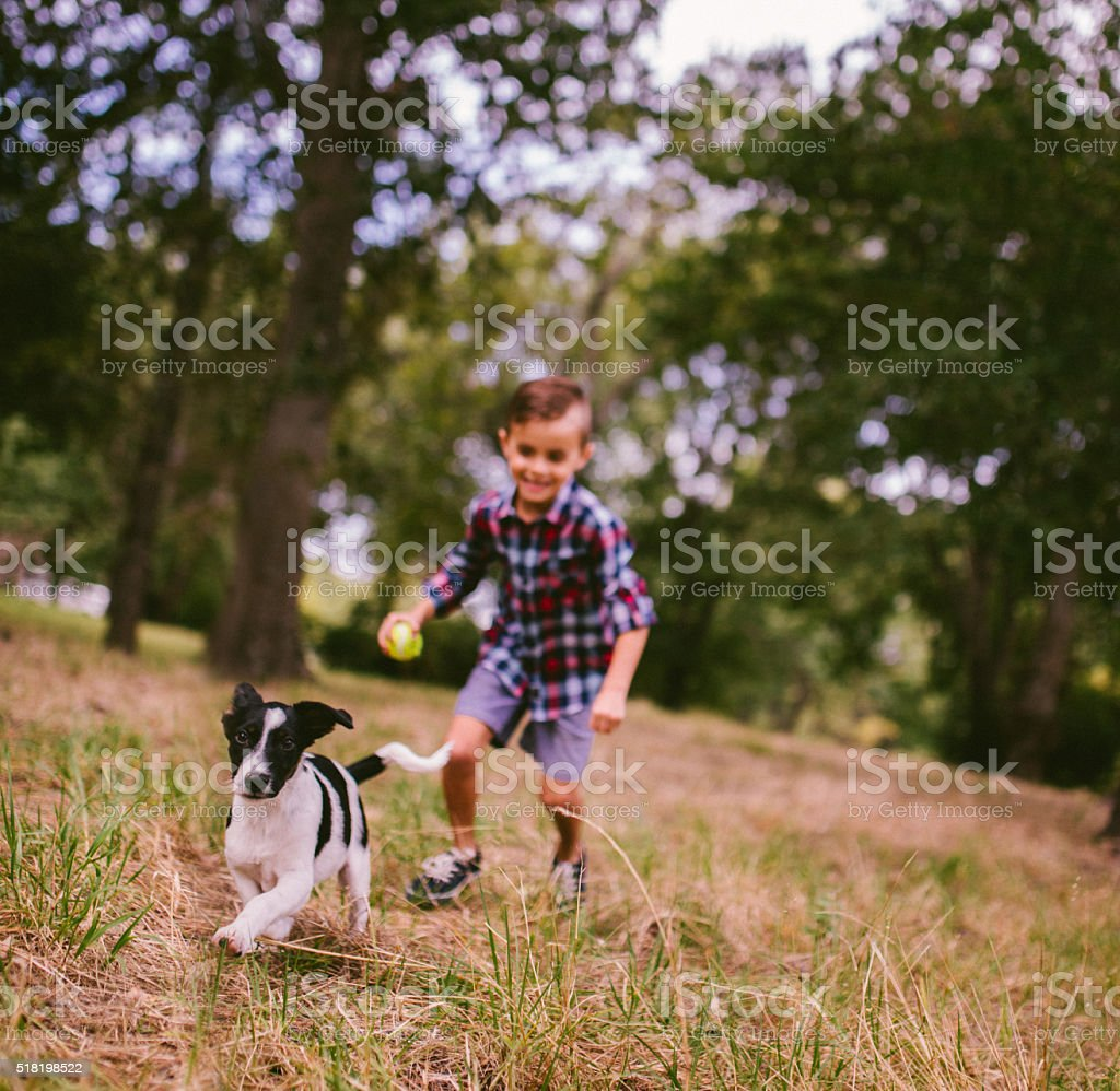 Boy chasing his running puppy dog in park with ball stock photo