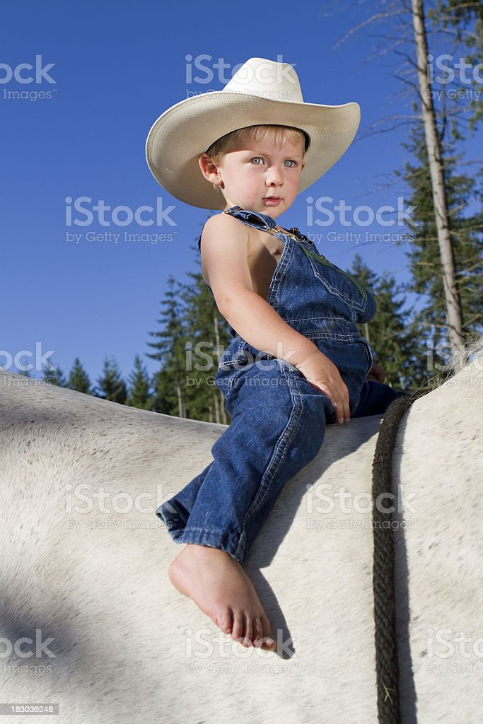 Boy Cowboy on Big Percheron Horse royalty-free stock photo