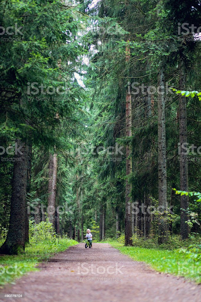 Boy cycling in the forest stock photo