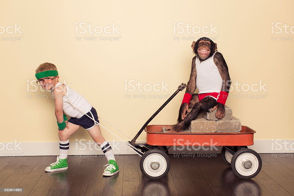 Boy Dressed in Workout Clothes pulls Chimpanzee Friend stock photo