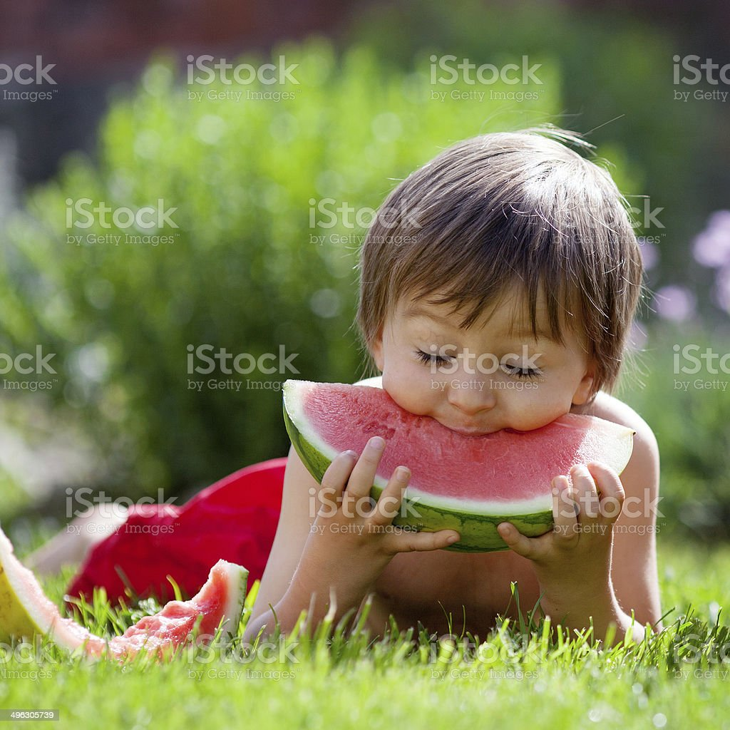 Boy, eating watermelon in the garden, summertime stock photo