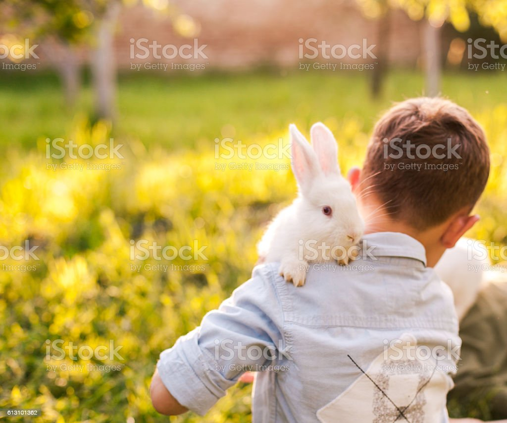 Boy embracing his rabbit in the park stock photo