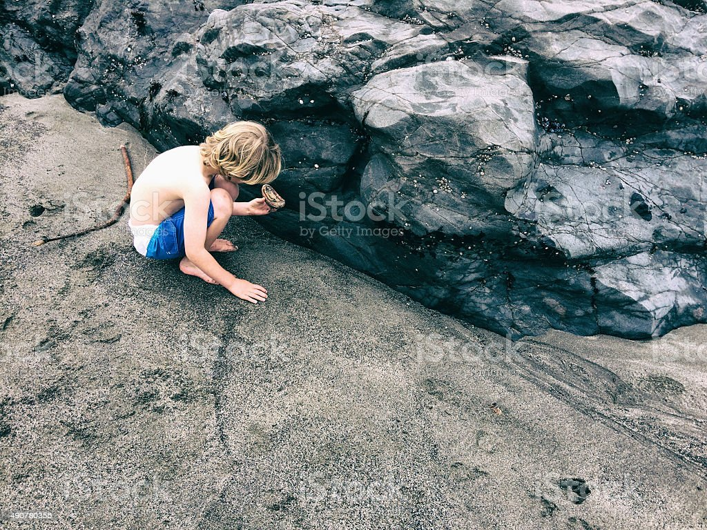 Boy exploring sea life at the coast stock photo