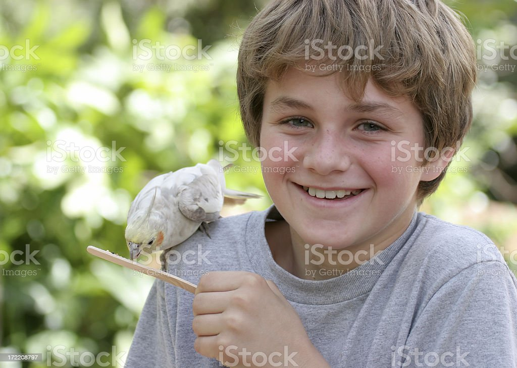 Boy Feeding Bird royalty-free stock photo