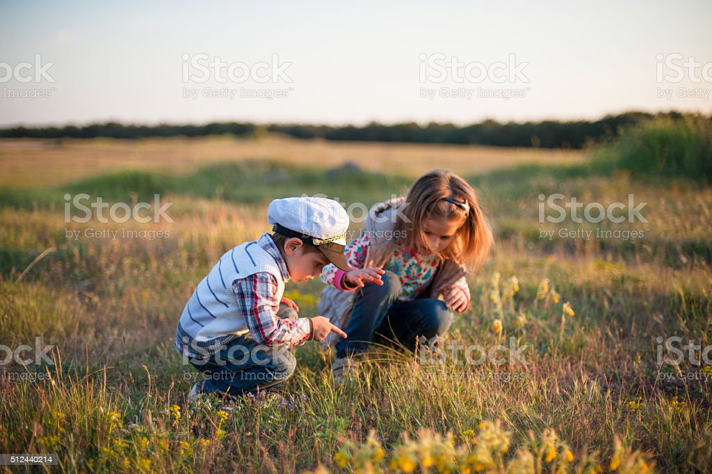 boy girl insect spring grass look point finger sun stock photo