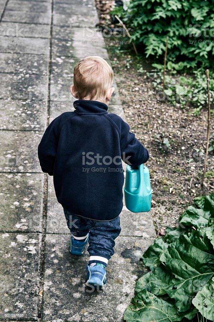 Boy helping in the garden stock photo