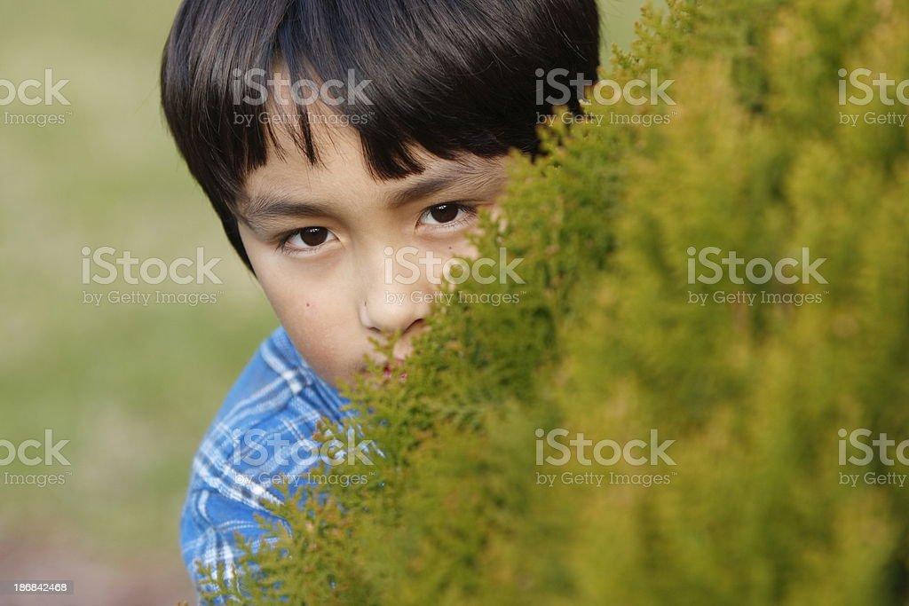 Boy hiding stock photo