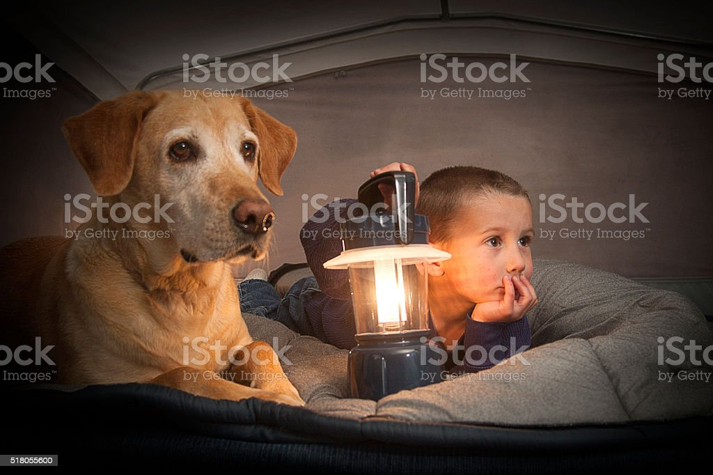 Boy & His Dog Camping stock photo