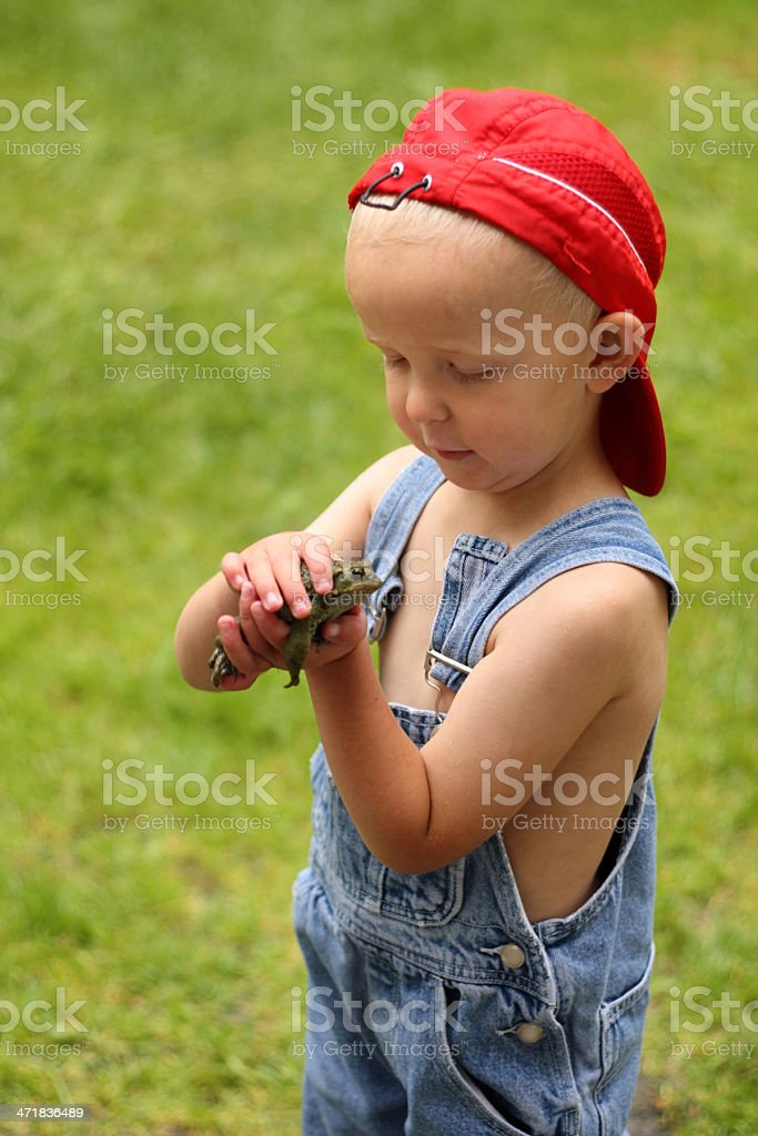 Boy Holding A Frog royalty-free stock photo