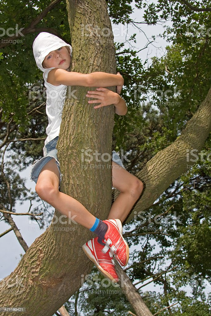 boy holding a tree, save forest stock photo