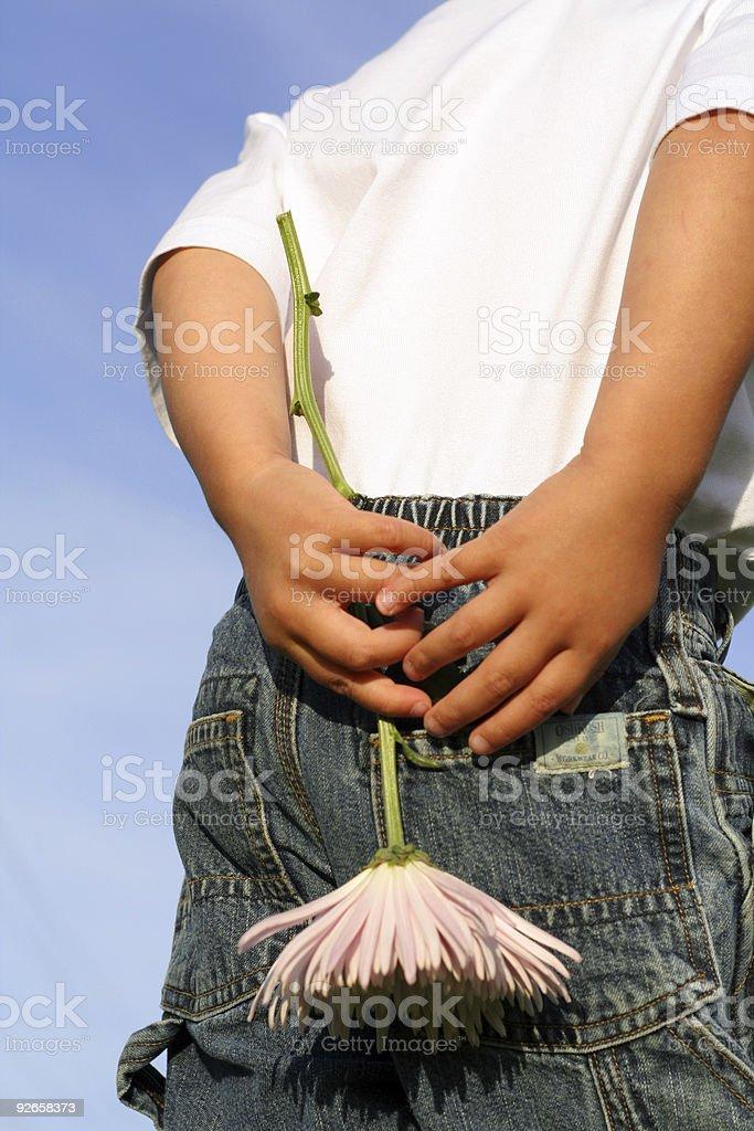 Boy holding flower royalty-free stock photo