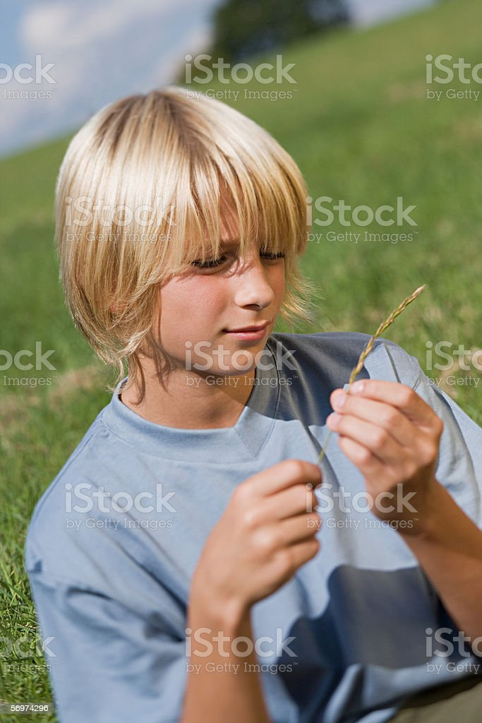 Boy holding grass in a field stock photo