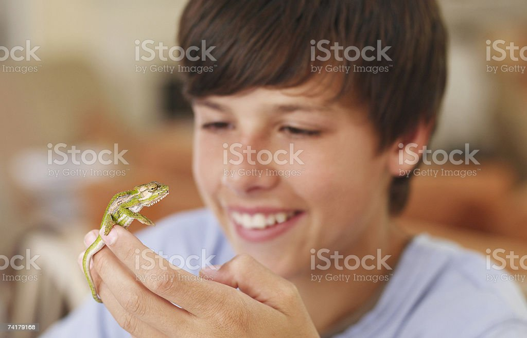Boy holding lizard smiling stock photo