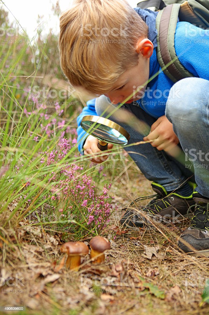 Boy Holding Magnifying Glass Discovering Nature stock photo