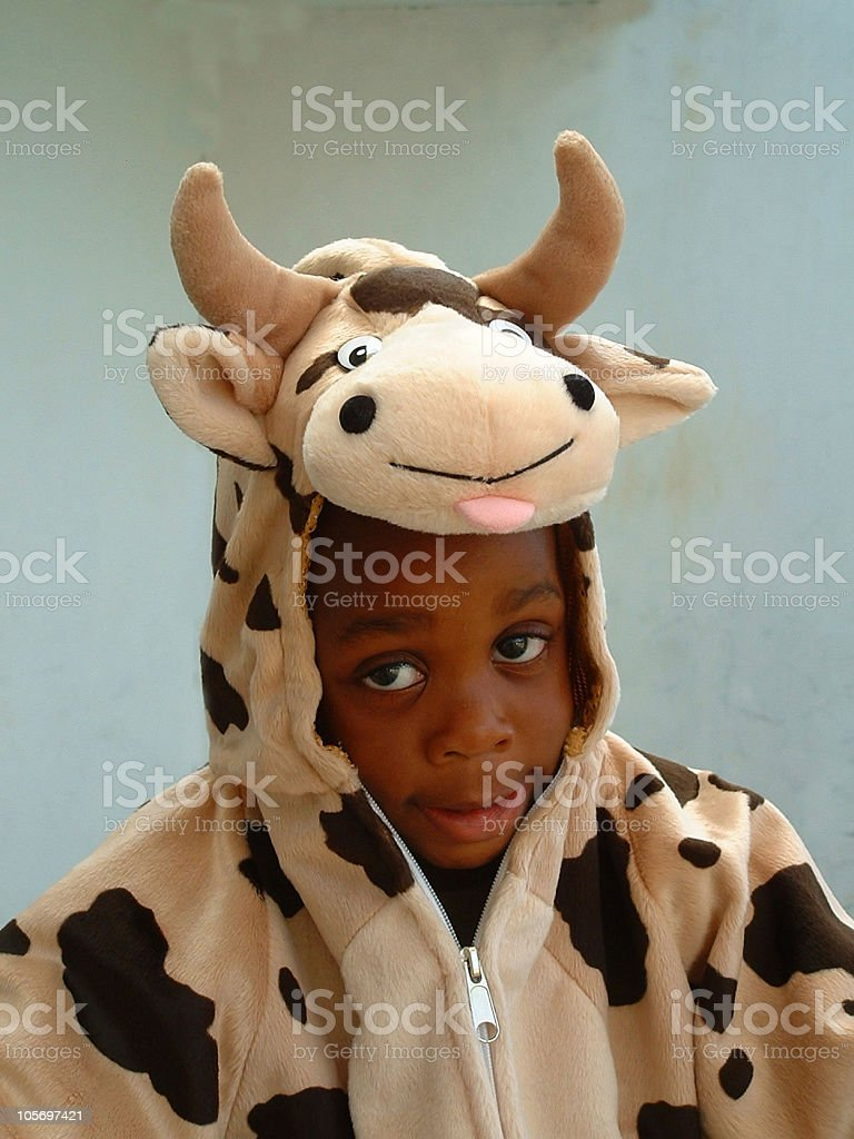 Boy in a cow costume royalty-free stock photo