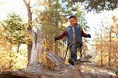 Boy in a forest looking down as he walks along a fallen
