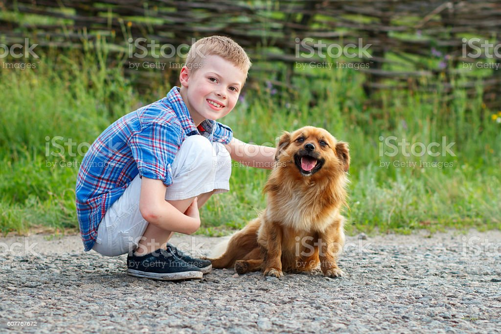 boy in a plaid shirt hugging a red fluffy dog. stock photo