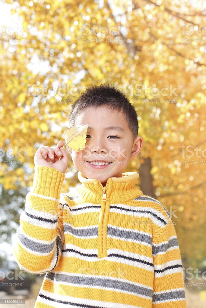Boy in outdoors play, autumn. royalty-free stock photo