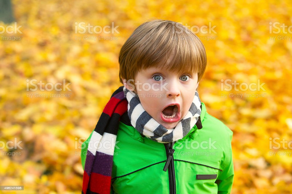 boy in park in the fall stock photo