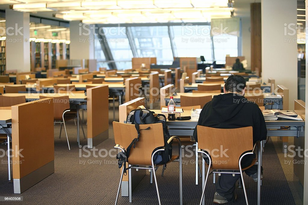Boy in the library royalty-free stock photo