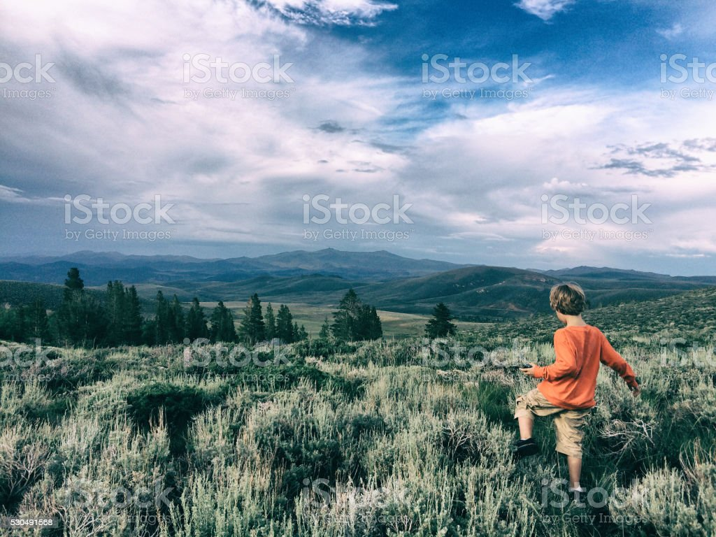 Boy in the summer wilderness stock photo